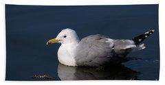 Beach Sheet featuring the photograph California Gull by Sharon Talson