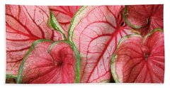 Caladium Beach Towel