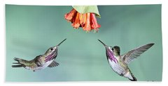 Calliope Hummingbirds Beach Towel