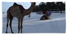 Camel On Beach Kenya Wedding 6 Beach Towel
