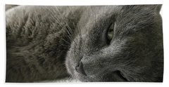 Beach Towel featuring the photograph Resting Face by Debbie Cundy