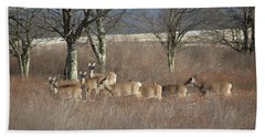 Canaan Valley Deer Beach Towel