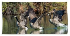 Canada Geese 5659-092217-1cr-p Beach Sheet