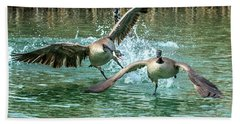 Canada Geese Chase 4906 Beach Sheet by Tam Ryan
