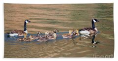 Canada Goose Family Beach Towel by Mike Dawson