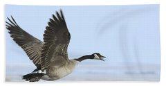 Canada Goose Beach Sheet