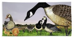 Canada Goose - Greylag Goose With Fledglings Chicks - White Fronted Goose -  Barnacle Goose Beach Towel