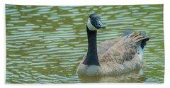 Canadian Goose Img 1 Beach Sheet