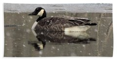 Canadian Goose In Michigan Beach Towel