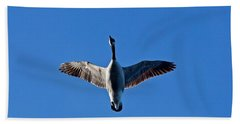 Beach Towel featuring the photograph Candian Goose In Flight 1648 by Michael Peychich