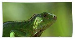 Candid Green Iguana In The Carribean Beach Towel by DejaVu Designs