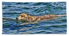 Canine Joie De Vivre Beach Sheet by Rhonda McDougall