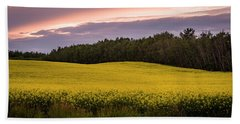 Beach Towel featuring the photograph Canola Crop Sunset by Darcy Michaelchuk
