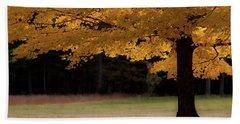 Canopy Of Autumn Gold Beach Towel