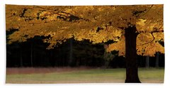 Canopy Of Autumn Gold Beach Towel