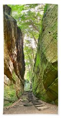Beach Towel featuring the photograph Cantwell Cliffs Trail Hocking Hills Ohio by Lisa Wooten
