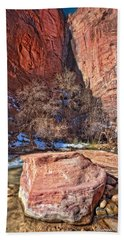 Beach Towel featuring the photograph Canyon Corner by Christopher Holmes