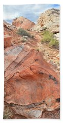 Canyon Of Color In Valley Of Fire Beach Sheet by Ray Mathis