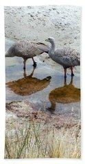 Cape Baron Geese On Maria Island 2 Beach Sheet