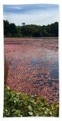Cape Cod Cranberry Bog Beach Sheet by Beth Saffer