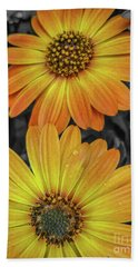 Cape Daisy's - Orange Beach Towel