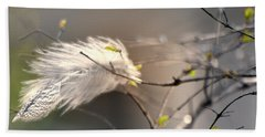 Captured Small Feather_04 Beach Sheet by Vlad Baciu