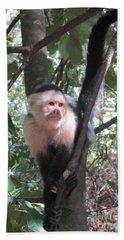 Capuchin Monkey 4 Beach Towel by Randall Weidner