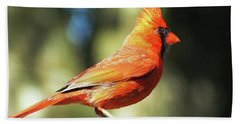 Cardinal All Dressed Up Beach Sheet