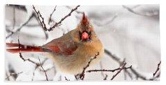 Cardinal Beauty Beach Sheet