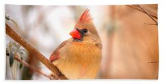 Cardinal Bird Female Beach Towel by Peggy Franz