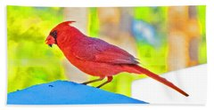 Cardinal Blue Beach Towel