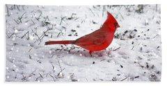 Cardinal In The Snow Beach Towel