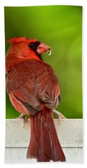 Cardinal Red Beach Towel