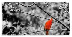 Cardinal... Beach Sheet