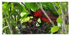 Cardinals Chowtime Beach Towel