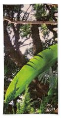 Beach Towel featuring the photograph Caribbean Banana Leaf by Ian  MacDonald