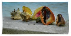Caribbean Charisma Beach Sheet by Karen Wiles