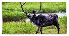 Beach Towel featuring the photograph Caribou by Anthony Jones