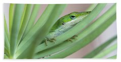 Carolina Anole Beach Towel