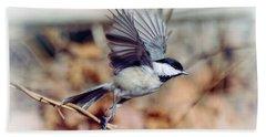 Carolina Chickadee - Come Fly With Me  Beach Sheet