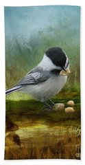 Carolina Chickadee Feeding Beach Towel