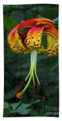 Beach Sheet featuring the photograph Carolina Lily by Barbara Bowen