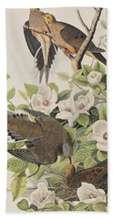 Carolina Turtle Dove Beach Towel by John James Audubon