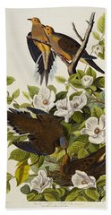 Carolina Turtledove Beach Towel by John James Audubon