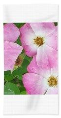 Carpet Of Pink Beach Towel
