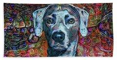 Cash The Blue Lacy Dog Beach Sheet