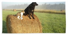 Cat And Dog On Hay Bale Beach Towel by Kent Lorentzen