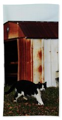 Cat And The Tool Shed Beach Sheet by Kim Henderson