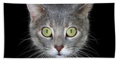 Cat Head On Black Background Beach Towel by James Larkin