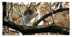 Cat Hunting Bird Beach Towel